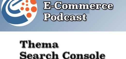 E-Commerce Podcast: Search Console