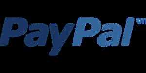 PayPal wird Kreditgeber für kleine Onlinehändler